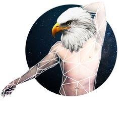 Cosmic Aquila