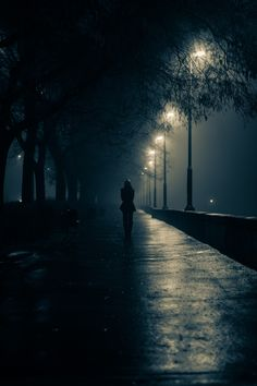 Night Walks // Patrick Jurányi