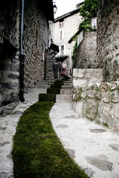 """To celebrate the 10th anniversary of the """"Arts and Nature Trail"""" program, artist Gaelle Villedary installed a long grass carpet across the village of Jaujac in France. The green trail required 168 rolls and runs for 420 meters (1,377 feet)."""