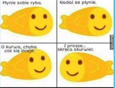 Read 93 from the story Memy by LoveSunnyxx_ (Natalka) with 57 reads. Very Funny Memes, Wtf Funny, Meme Pictures, Reaction Pictures, Polish Memes, Funny Mems, Weird Stories, Man Humor, Best Memes