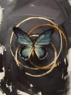 Still Life — Lindsey Kustusch Butterfly Painting, Butterfly Art, Butterfly Sketch, Butterflies, Mini Canvas Art, Abstract Canvas Art, Art Drawings Sketches, Animal Paintings, Lovers Art