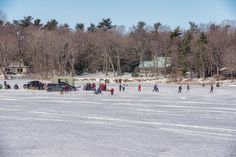Gathering on the Ice...... Hudson, Quebec, Canada