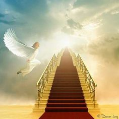 Stairway To Heaven Images & Pictures Heaven Images, Heaven Pictures, Jesus Pictures, Stairway To Heaven, Heaven Wallpaper, Art Visionnaire, Jesus E Maria, Heaven's Gate, Christian Post