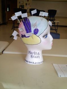 how to make a fake brain school project