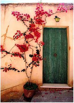 old green door (Maria Edith)