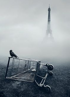 Funny... I don't think I ever saw a metal shopping cart in Paris when I lived there 1959-62.  Everyone carried a couple of the mesh shopping bags when they went to the marche...