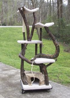 Custom Cat trees for kitties to feel great outdoors!