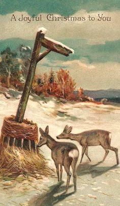 Deer in The Snow | Vintage Christmas Image
