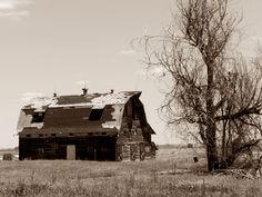 Old barn, Erie CO