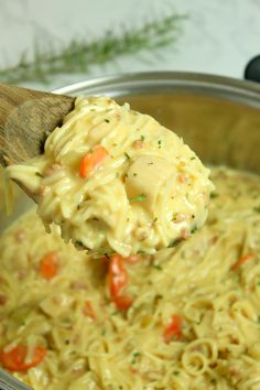 Crack Chicken Noodle Soup, Chicken Noodle Casserole, Chicken Noodles, Egg Noodles, Chicken Noodle Soup Rotisserie, Creamy Chicken And Noodles, Macaroni Casserole, Rice Noodle Soups, Chicken Pasta