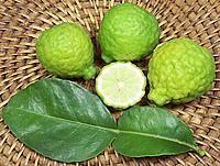 Whole and Cut Kaffir Limes with Leaf