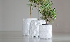 Form-Shifting Origami-Impressed Pots Develop With Your Plant Flowers develop; Apart from this particular, origami impressed Development pot. Because the plant grows and expands, so does the po. Plant Covers, Origami Design, Origami Flowers, Planter Boxes, Growing Plants, Potted Plants, Flower Pots, Planting Flowers, Art Decor