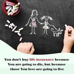 Life Insurance, Stuff To Buy