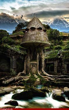 Amazing Tree Houses For Sale   Wallpaper Amazing Tree Houses 900x1435 Magnificent Design Tree House ...