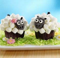 Little Lamb Cupcake Recipe Pictures, Photos, and Images for Facebook, Tumblr, Pinterest, and Twitter