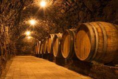 tuscany winery photo - photo courtesy of Select Italy