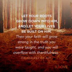 Encouraging Word: Let your roots grow down into him, and let your lives be built on him. Then your faith will grow strong in the truth you were taught, and you will overflow with thankfulness. Colossians 2:7 NLT