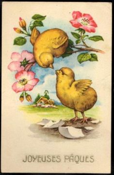 Vintage-French-EASTER-Postcard-Newly-Hatched-Chicks-amp-Roses-Joyeuses-Paques