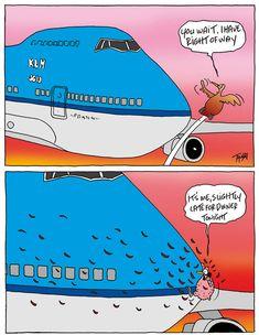 cartoons Toon van Driel - Aviation Cartoons book Good Landing