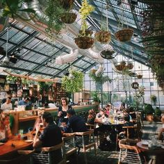 Urban Outfitters - Blog - Thursday Tip-Off: Decorating With Plants