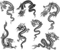 Resultado de imagem para dragões orientais de frente