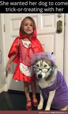 Absolute genius Little Red and Wolf Husky <3