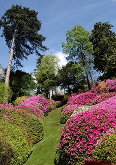 18th century Villa Carlotta's gardens in Lake Como, Italy
