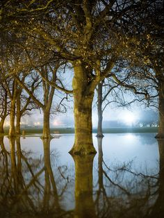 Photo by Andy Lukey - Flooded Hagley park in Christchurch, New Zealand. I am a Cantabrian so I did not have to travel far to get this image. I drove past the park one night after about three days of heavy rain had flooded it.