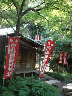 Sasuke Inari Shrine , Kamakura (鎌倉・佐助稲荷)