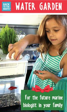 Want to gift something fresh to your family? Give an entire ecosystem. Fish feed the plants. Plants clean the water. Kids love growing their own food at home. Discover how this works at http://backtotheroots.com/products/watergarden