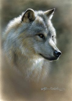 Wolf by artist Rebecca Latham. Wildlife Paintings, Animal Paintings, Small Paintings, Beautiful Paintings, Wolf Spirit, Spirit Animal, Beautiful Creatures, Animals Beautiful, Tier Wolf