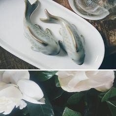 🐠🐠🌌 #tea #teapet #fish #gardenia #whiteflowers #gardeniajasminoides #spring #teaware #chinesetea #teaculture #teahead #thesecretgarden #ruyao #中国茶 #茶具 #茶文化 #茶宠物 #汝窑 #栀子花 #白花 #秘密#花园 #茶园 #chinskakulturaherbaty #herbacianezwierzatko #rybki #bialekwiaty #wiosna #tajemniczyogrod #herbaciarium Fresh Rolls, Tea Time, Fish, Vegetables, Spring, Ethnic Recipes, Garden, Garten, Pisces