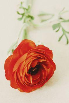 Floral Art - The Artful Desperado, All & Sundry, and Tomasz Wagner.