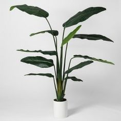 """Project 62 16.5/"""" x 6/"""" Artificial Snake Plant In Pot Green//White"""