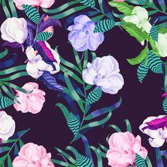 Tropical Flowers by Sabina Gasanova - Tropical flowers