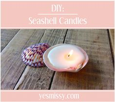 30 Marvellous DIY Seashell Crafts Adding a Beachy Flair to Your Space!