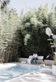 Natural swimming pools are trending in a major way, so here's what you need to know before diving in. Natural Swimming Pools, Natural Pools, Backyard Landscaping, Backyard Pools, Landscaping Ideas, Small Pools, Dream Pools, Pool Decks, Pool Houses