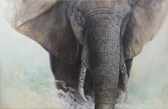 Bryan Holland. #art #painting #realism #elephant #beautiful #ivory #tusks #animal #animalart #love