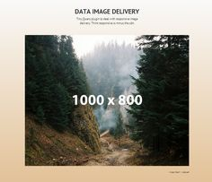Data Img – jQuery Plugin for Responsive Images
