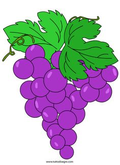 grappolo-uva