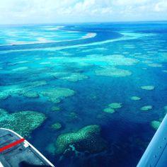 Chegando na Grande Barreira de Corais! Com 2.300 quilômetros de extensão e é o maior sistema de recife de corais do mundo! #grandebarreiradecorais #greatbarrierreef #australia #viagem #turismo #dicasdeviagens #denisemundoaforablogspot by denisemundoafora http://ift.tt/1UokkV2