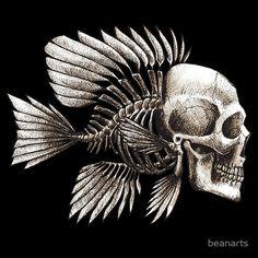 skullfish by beanarts