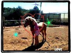 <3 LOVE <3