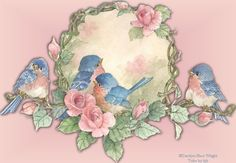 sweet little blue birds Bird Pictures, Vintage Pictures, Monday Greetings, Old Greeting Cards, Bird Cards, China Painting, Bird Prints, Vintage Cards, Beautiful Birds