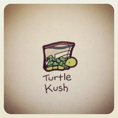 Whatever that means it's still cute Sweet Turtles, Cute Turtles, Baby Turtles, Cute Turtle Drawings, Cute Drawings, Animal Drawings, Tiny Turtle, Turtle Love, Pet Turtle