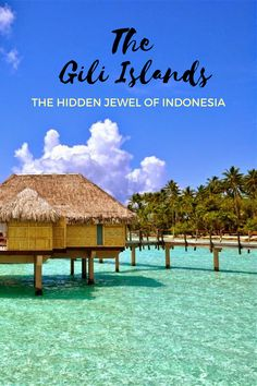 The Gili Islands are a trio of 3 islands, including Gili Trawangan, Gili Meno, and Gili Air. They are located at 20 minutes boat ride from Lombok. It is the best place for snorkeling and scuba diving. Tourists can book a day trip to snorkeling at the Gili Islands. For more visit www.dennydarmo.com #lombok #indonesia #bali #travel #island #gili Bali Travel, Luxury Travel, Hawaii Travel, Places To Travel, Travel Destinations, Travel Deals, Travel Images, Travel Pictures, Gili Air