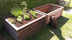 56 Besten Hochbeete Raised Garden Bed Bilder Auf Pinterest