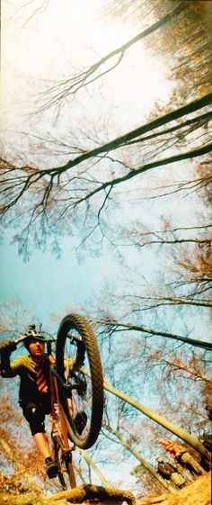 A Photo by locutus - Lomography