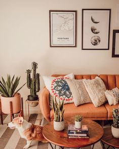 Images and videos of home decor - – A mix of mid-century modern, bohemian, and industrial interior style. Home and apartment decor, - Boho Living Room, Bohemian Living, Bohemian Beach, Modern Bohemian, Hipster Living Rooms, Bohemian Office, Coastal Living, Living Spaces, Style Deco