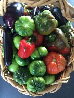 Lovely harvest of produce from the garden Harvest, Stuffed Peppers, Foods, Vegetables, Garden, Red, Food Food, Garten, Stuffed Pepper